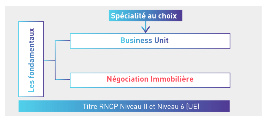 Schema Manager Cp Immobilier