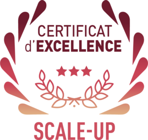 Logo Ce Scale Up