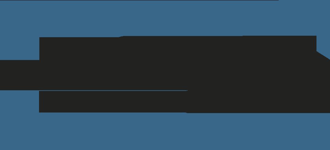 Logo Bachelor 2019