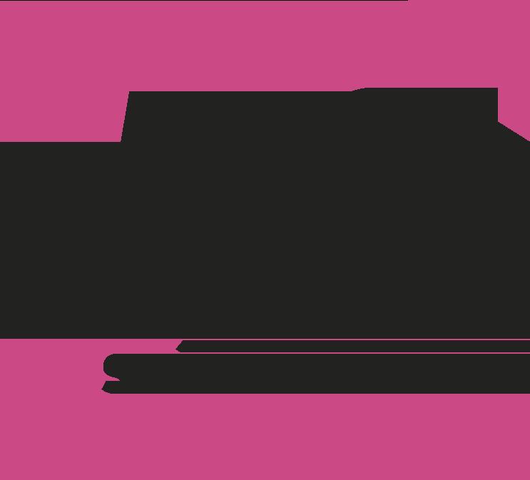 Logo Ms 2019